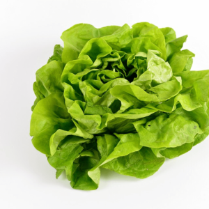 Organic Butter Lettuce <strong>Head </strong>