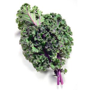 Organic Russian Kale  <strong> Bunch </strong>